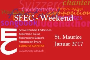 SFEC-Collage-Weekend-2017